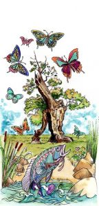 Butterflies_Fish_landscape_tree_nature_animal_mixed media_watercolour_painting_pencil_drawing_book_illustration 2