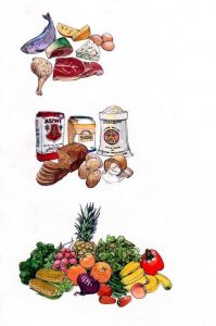 food groups_groceries_bread_fish_meat_dairy_vegetables_mixed media_watercolour_painting_pencil_drawing_book_illustration 2