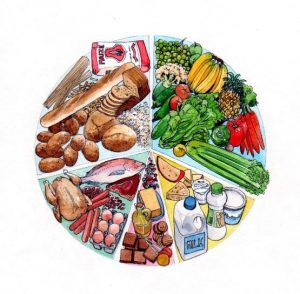 food groups_groceries_milk_bread_fish_meat_food_dairy_vegetables_mixed media_watercolour_painting_pencil_drawing_book_illustration 2