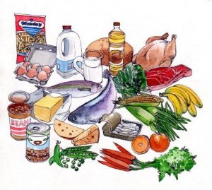 food_groups_groceries_milk_bread_fish_meat_fats_dairy_vegetables_mixed media_watercolour_painting_pencil_drawing_book_illustration 2