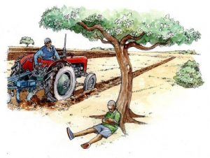 tractor_farmer_ploughing_young_girl_tree_mixed media_watercolour_painting_pencil_drawing_book_illustration 2