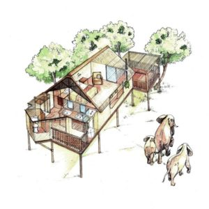 Elephant Eye chalet lodge camping house design layout perspective elevation graphite 2