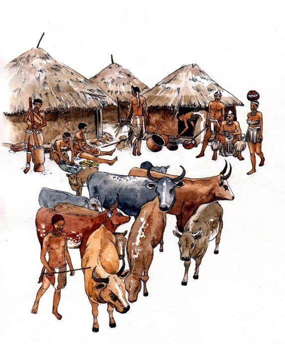 African traditional tribal homestead cattle book 3
