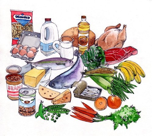 Food groups groceries milk bread fish meat fats dairy vegetables book 2